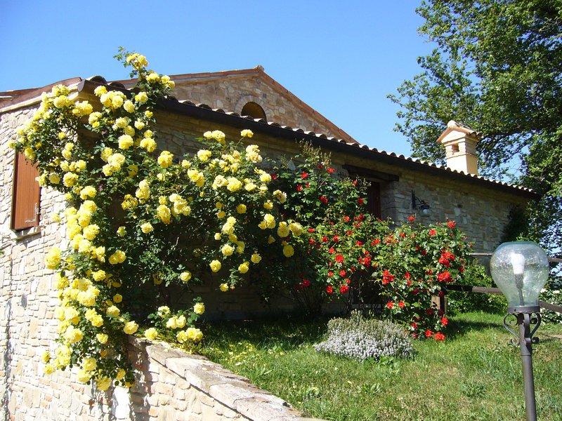 Country House Il Biroccio a Urbino. Apt 'Volpe' per 2 persone. Vista panoramica!, holiday rental in Urbino