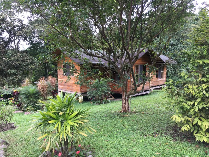 Side view of cottage, showing kitchen, 2 bedrooms, garden & surrounding forest.
