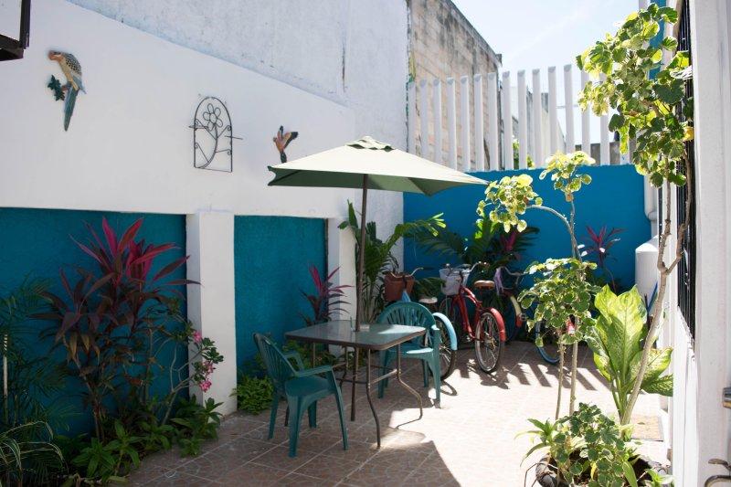 Kleiner Garten am Eingang der Studien.