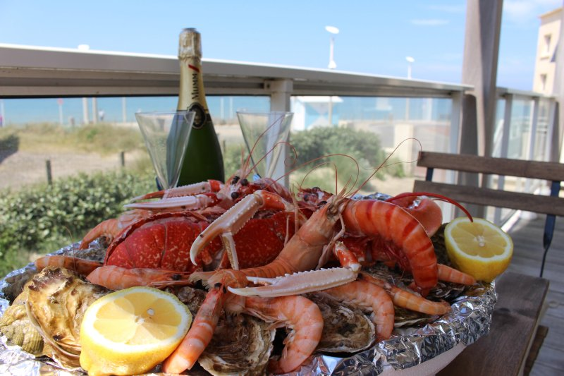 Pleasures and delights of the sea to enjoy on the shaded terrace at noon