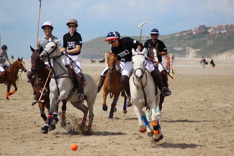 Numerous and various animations on the beach (here Polo)