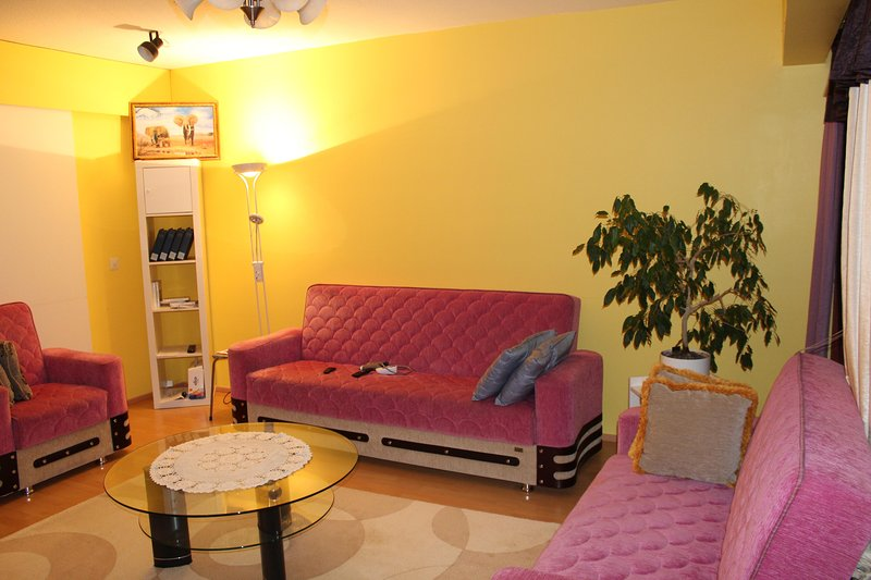 Nice Appartment une chambre commune, holiday rental in Voyri