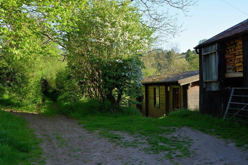 Log Cabin on a Welsh hill farm, casa vacanza a Llandovery