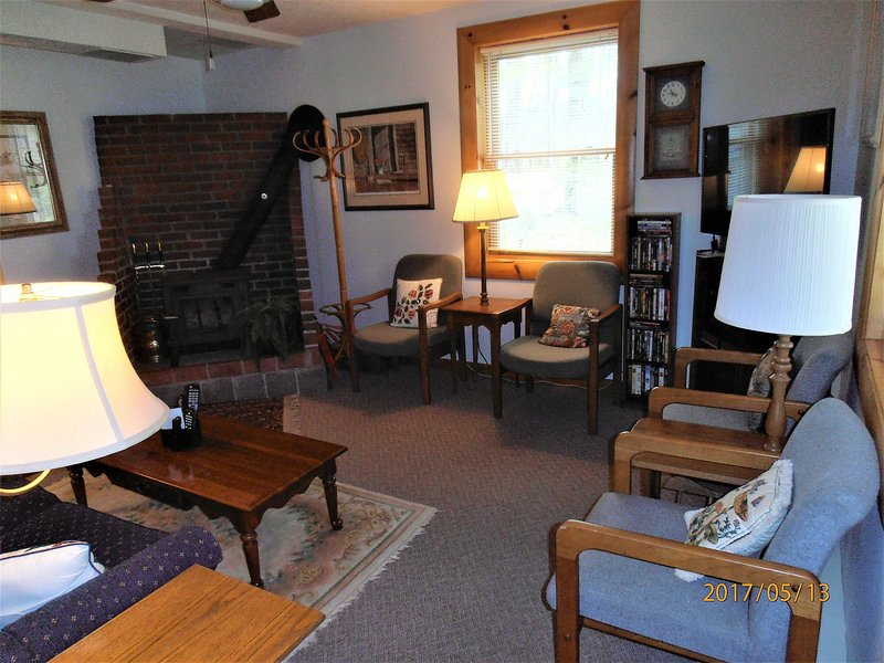 Rec/TV Room with Wood Stove