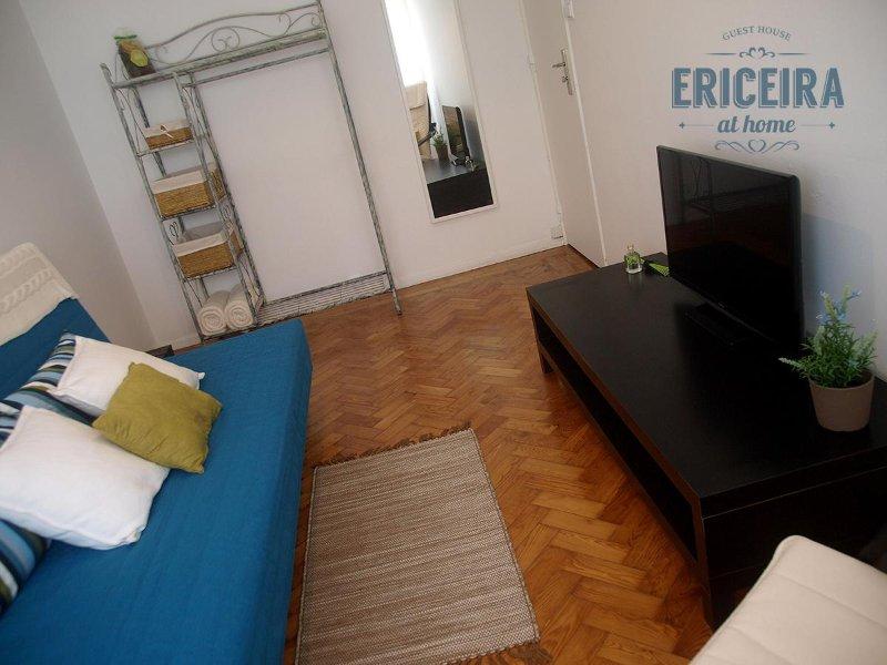 Sala de estar com TV e sofá cama