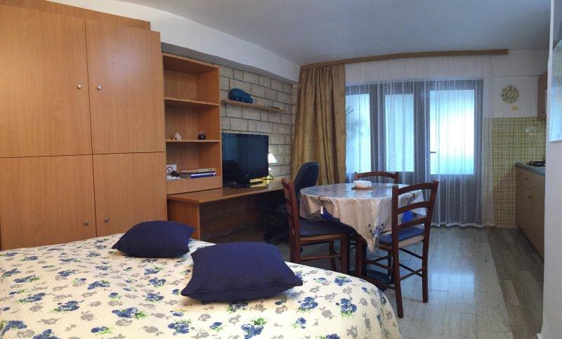 Apartment Villa Mattossi Studio A1, holiday rental in Rovinj