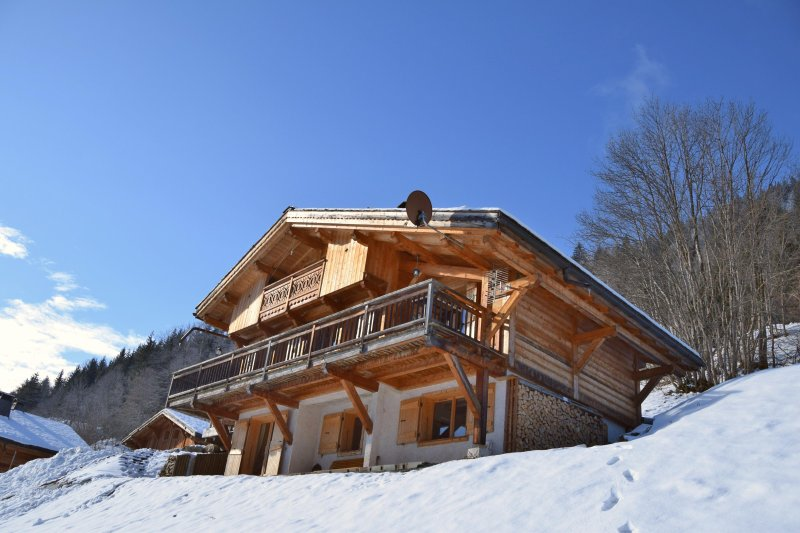 View of Mont Blanc Chalet