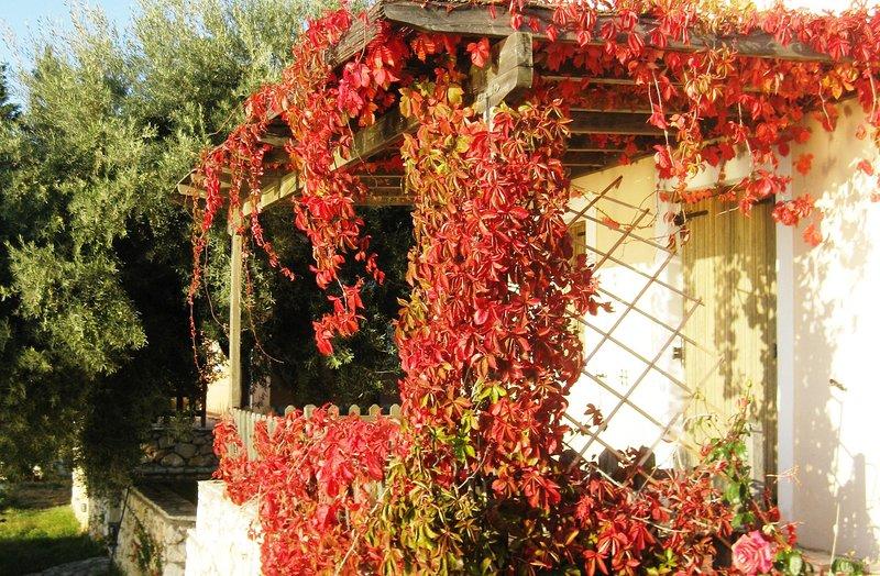 Anerada / sun nature holidays, holiday rental in Dragano