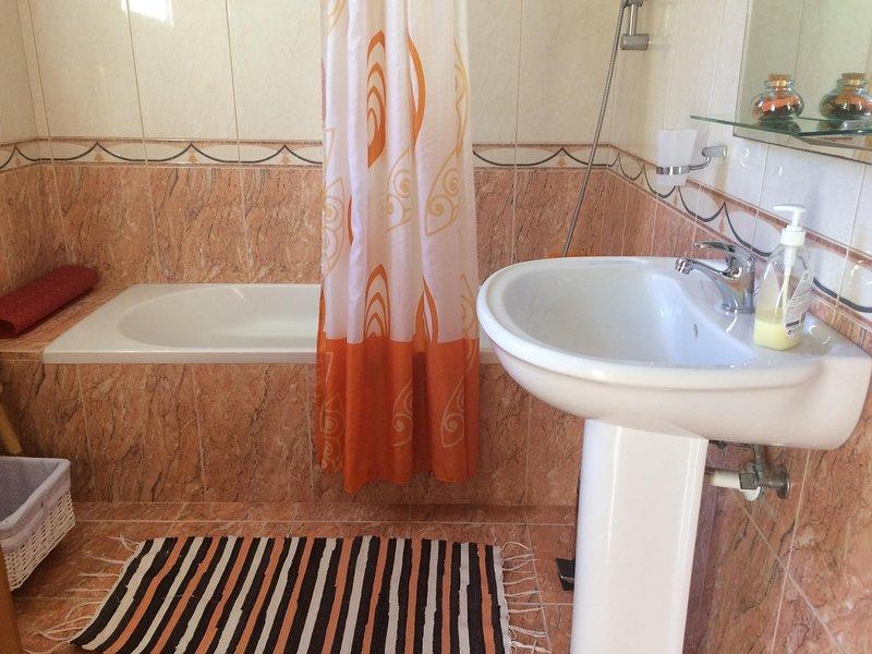 baño principal con bañera y ducha en la cabeza