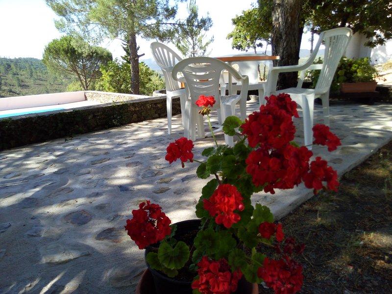 Quinta das Lameirinhas Twin Room, alquiler de vacaciones en Castelo de Vide