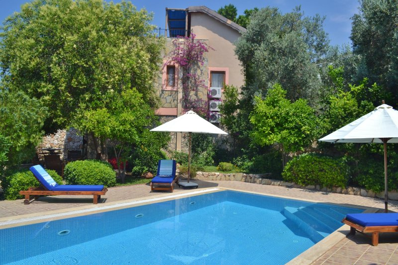 Villa Ayisigi Bahcesi has its own private swimming pool and sun terraces