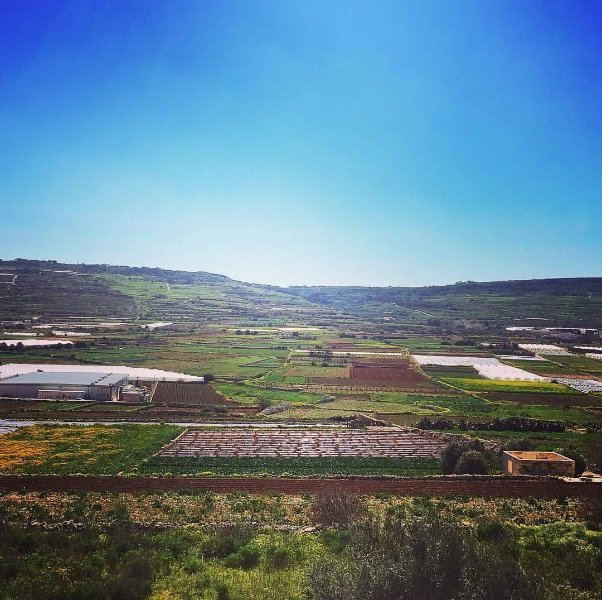 Terrace house - Long Let, holiday rental in Mgarr