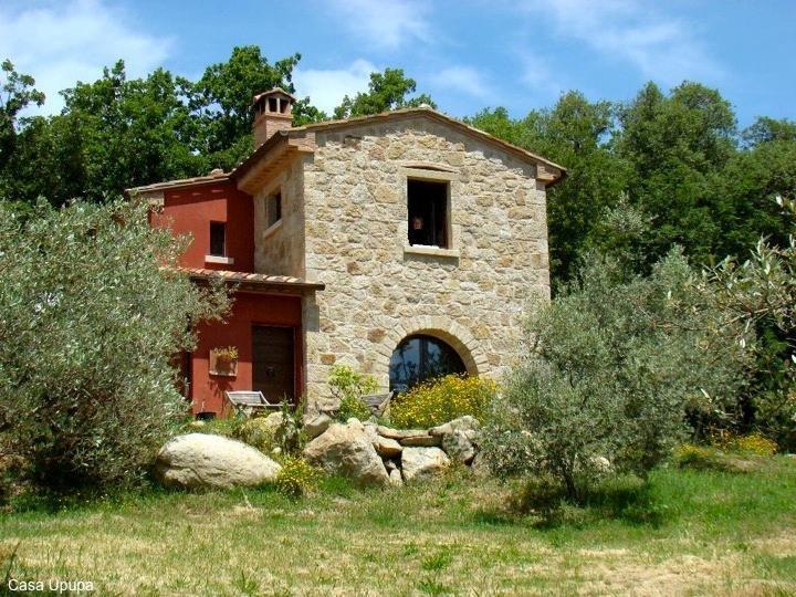 Wohlfühlferien inmitten des Olivenhains, location de vacances à Sticciano Scalo