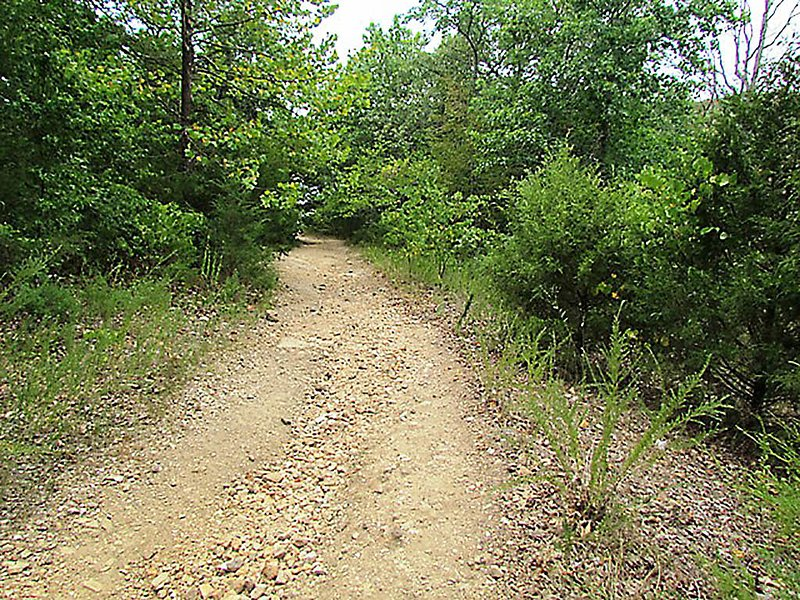 Dirt Road,Gravel,Road,Path,Walkway