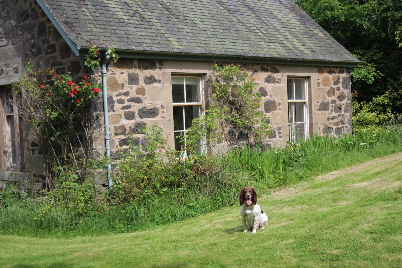 Gean Tree Cottage - Fingask Castle, holiday rental in Perth
