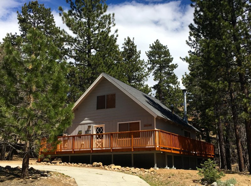 Colusa Pines Cabin - Big Bear Lake, CA