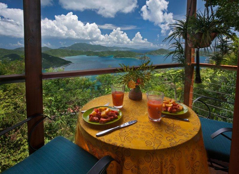 Coral Bay, St. John Luna di miele / Lovers vacanze Villa - Vista per la prima colazione - Teahouse Treehouse