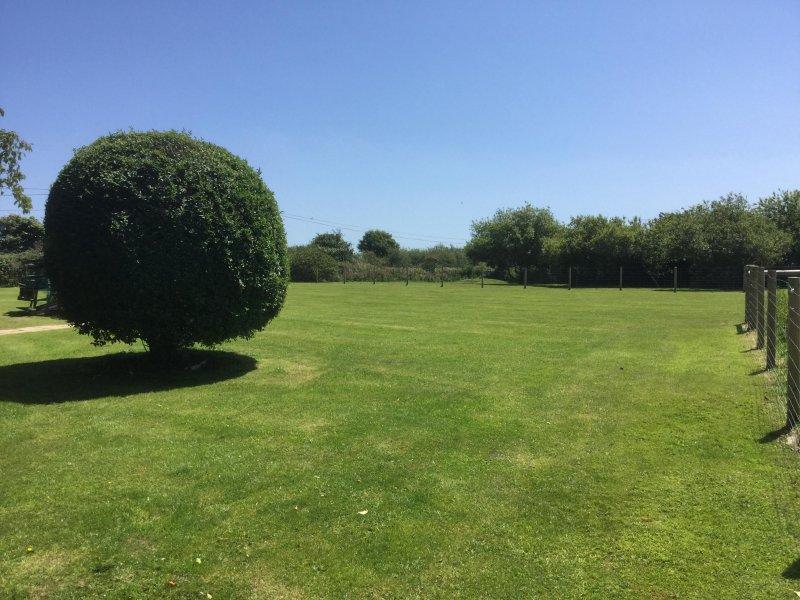 The HUGE garden