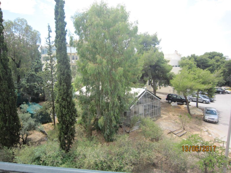 acropolis view forest front  2 bd rennovated  flat, holiday rental in Kaisariani