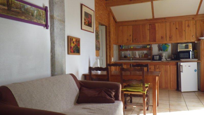 Una grande sala, angolo cottura, zona pranzo, salotto