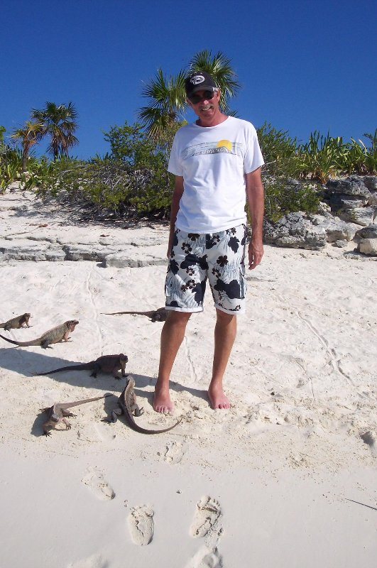 Cays tour to visit the Bahamian Rock Iquanas