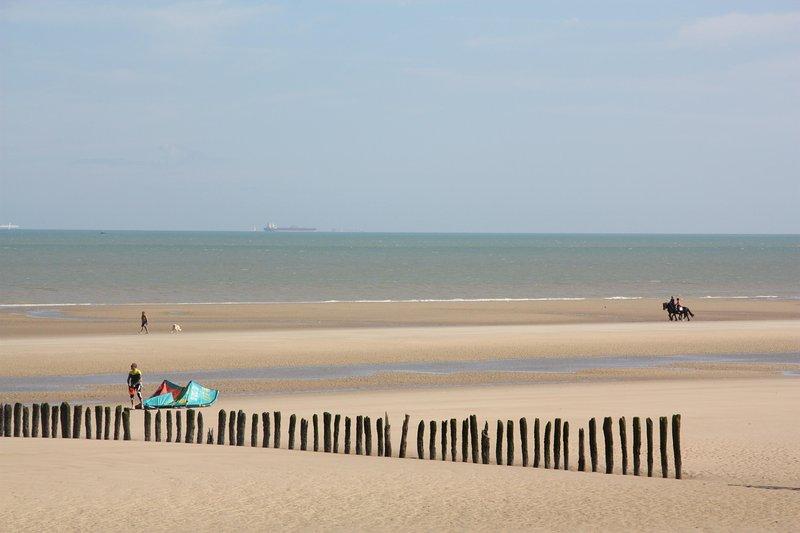 Korsa gatan. Där finns ... 8 km med fin sand.