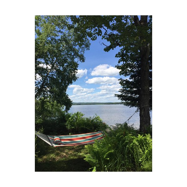 View from the hammock. What a way to spend a day by the lake.