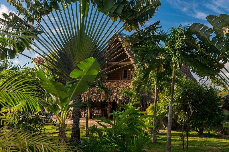 Chalet Tropical # 3: vista para o jardim