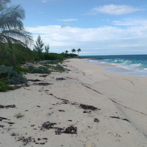 Nuestra playa mirando hacia el norte. Pocas personas se aventuran a esta parte de la isla ya que no hay acceso público.