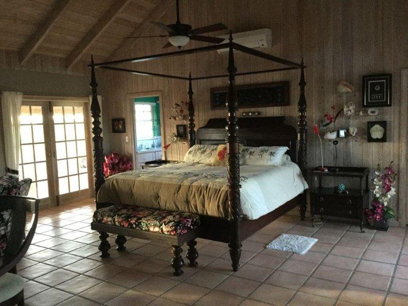 dormitorio principal con baño privado, armario vestidor, 4 puertas francesas que se abren en los patios seleccionados