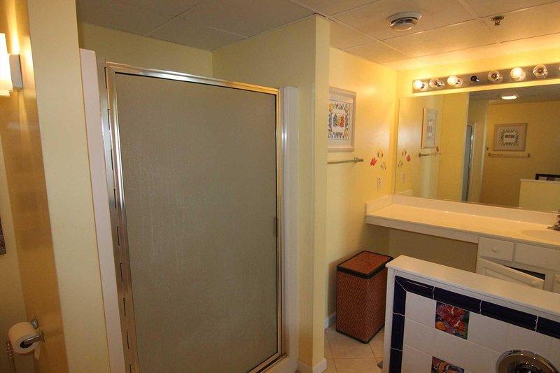 Generous walk-in Shower and Vanity in Master Bath