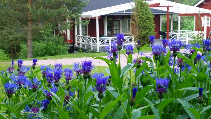Countryside Retreat Cabin, holiday rental in Lohja