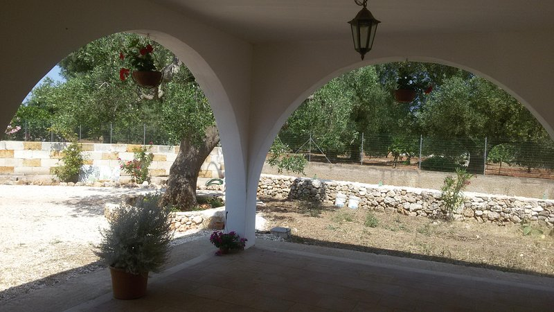 large veranda with views of the olive trees