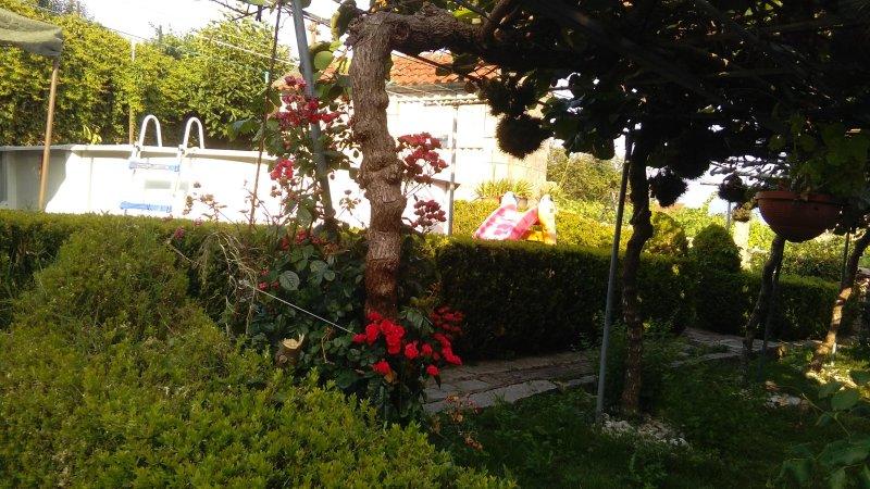 espace jardin et piscine enfants