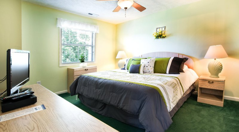 2BR/ 2bath  CONDO--LOOKING FOR GREAT PLACE TO STAY IN MYRTLE BEACH, holiday rental in Conway