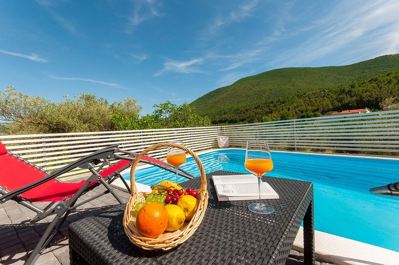 Matan Residence with pool, vacation rental in Zadvarje