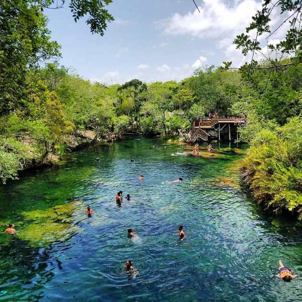 We highly recommend visiting the Jarin del Eden Cenote! Within 15 minutes