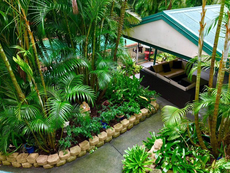 The tropical gardens, pool cabana and pool area from above