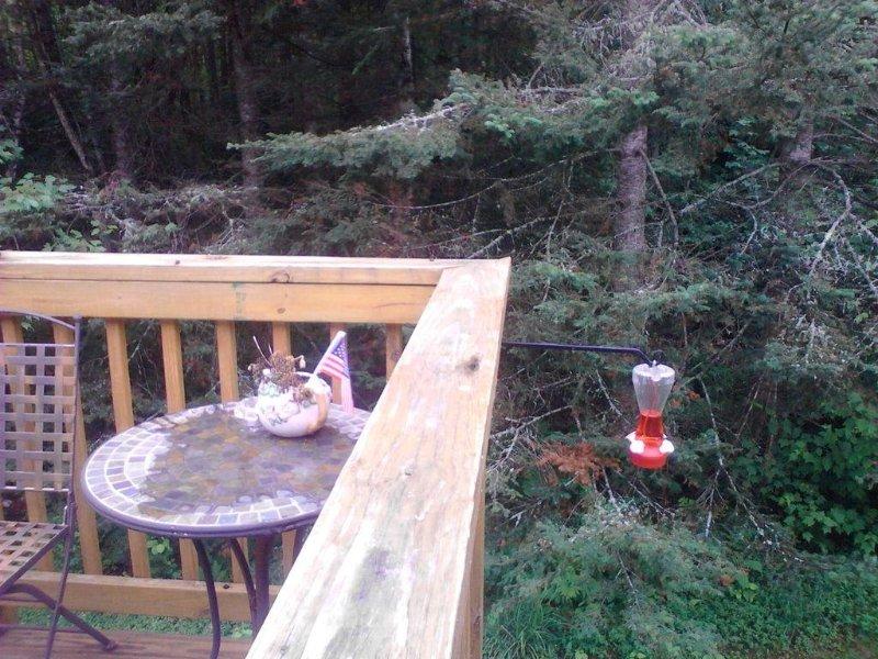 Back deck.  Great bird watching!