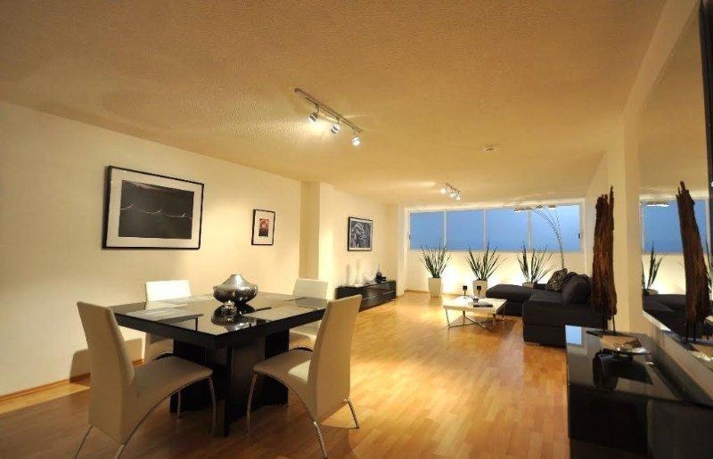diseño loft moderno y espacioso de la sala de estar y comedor.