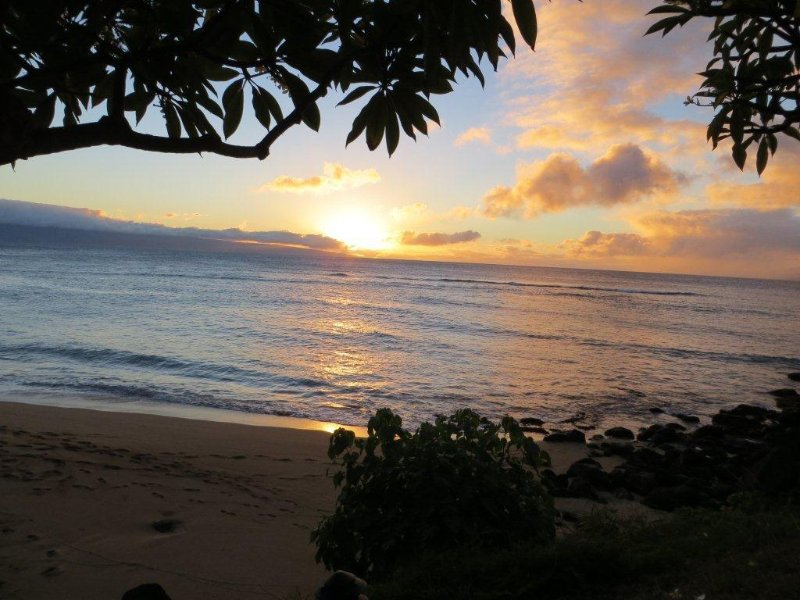 Sunset from Under the Plumeria Tree in Front of Our Condo