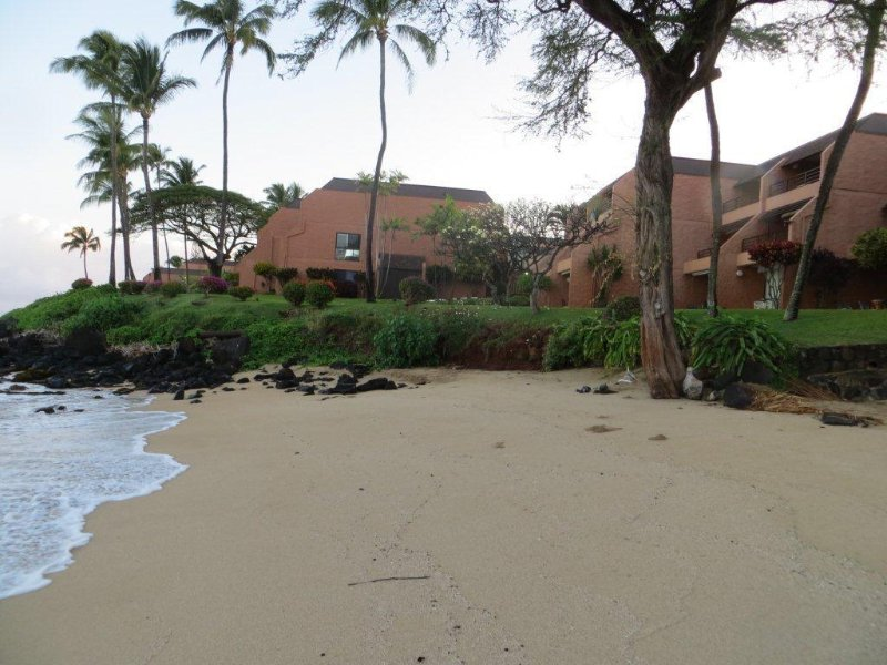 View of Our Building from the Kuleana South Beach