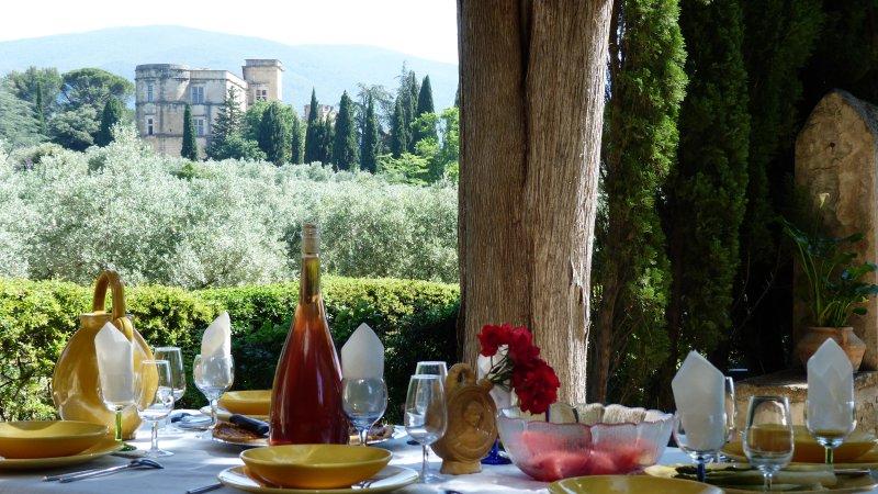 Dejeuner face au chateau de Lourmarin  en Provence