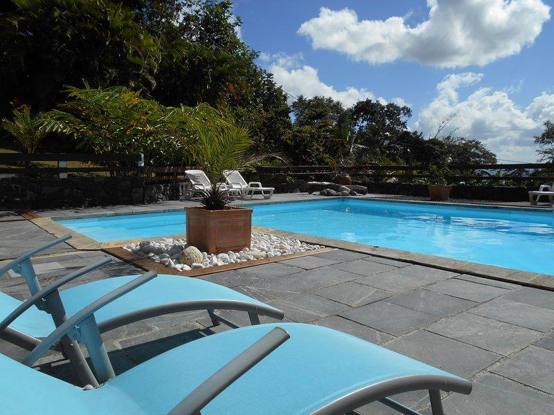 10mx5m zwembad met 100m2 strand in het hart van de tropische tuin