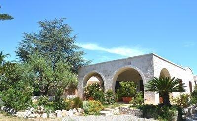 The Olive Tree: Außenansicht mit kleinem Garten.