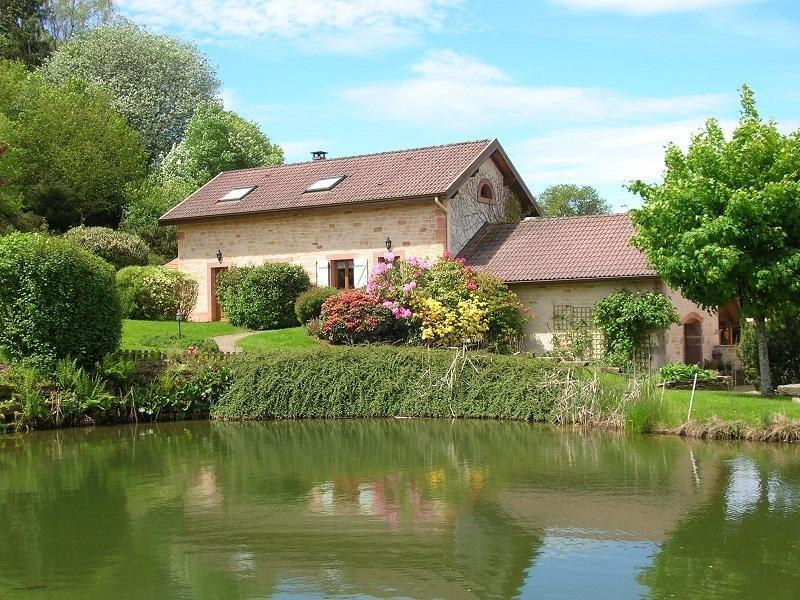 MAISON DE CAMPAGNE AU CALME SUR TERRAIN PAYSAGE AVEC UN ETANG, location de vacances à Remiremont