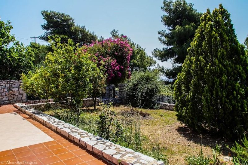 Villa Dimitrios SeaView Appartment, vacation rental in Karavostasi