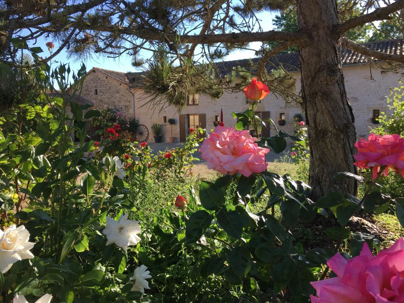 La Chouette:  spacious 4 bedroom gite, swimming pool, large gardens, play area, holiday rental in La Foret de Tesse