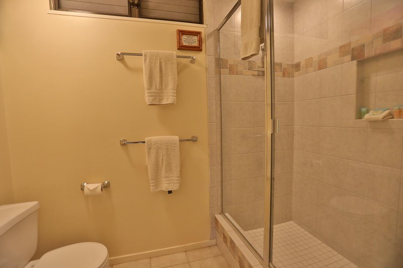 Master bathroom also features a large walk-in shower