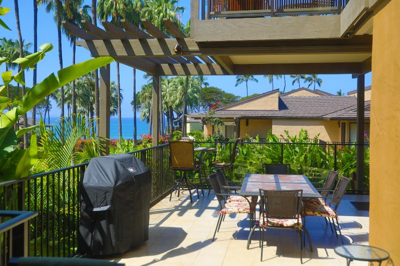 Huge lanai (patio) with covered and uncovered areas for your enjoyment
